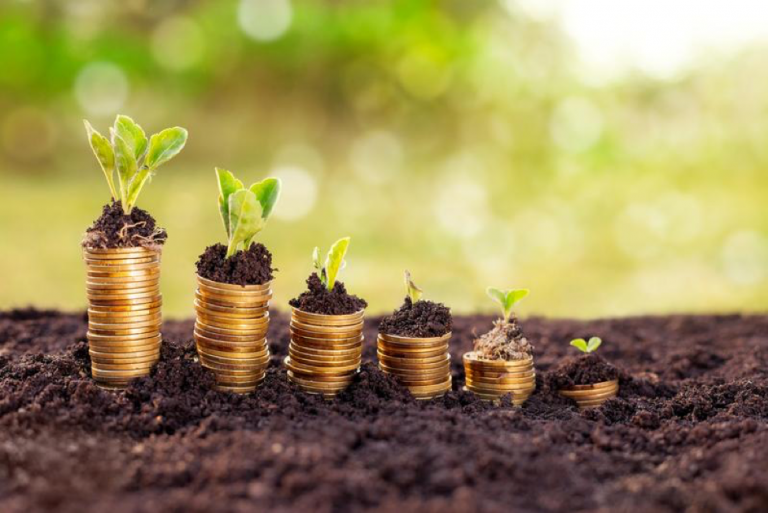 3 Pillars That Will Support Your Financial Wellness